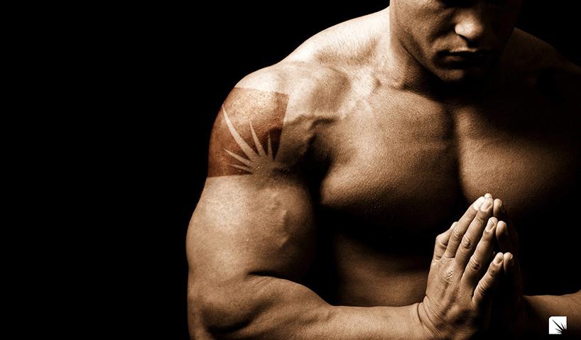Hva er Steroider?